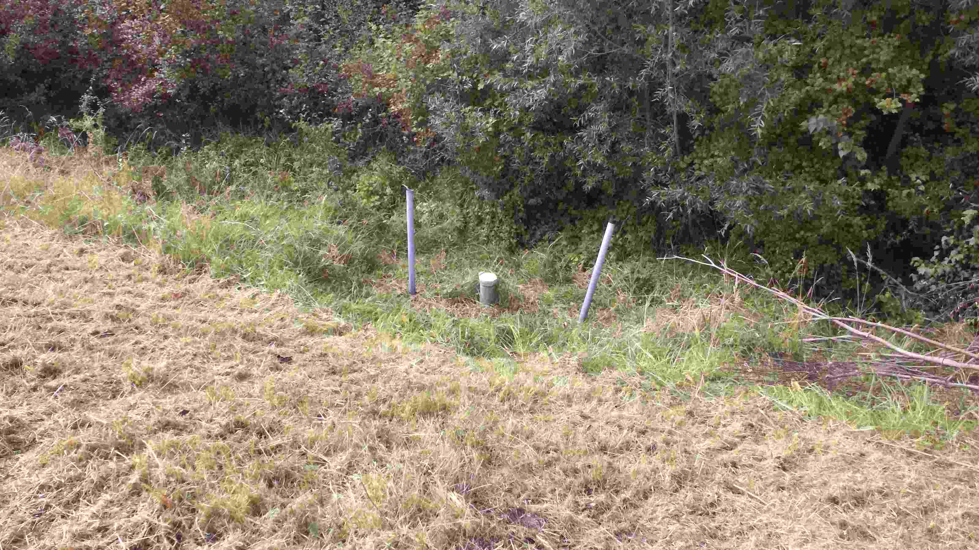 Picture of the measurement site